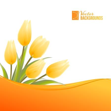 bulb tulip: Orange card with tulips. Vector illustration.