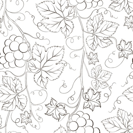 Seamless grape pattern black and white. Vector illustration. Vector