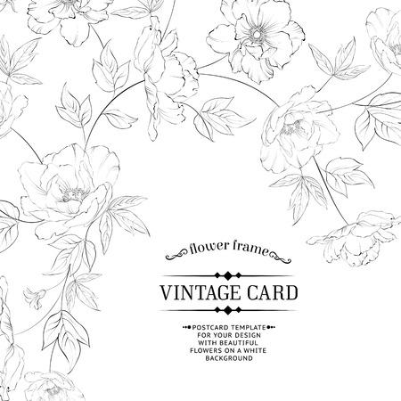 Design of vintage floral card. Vector illustration. Vector