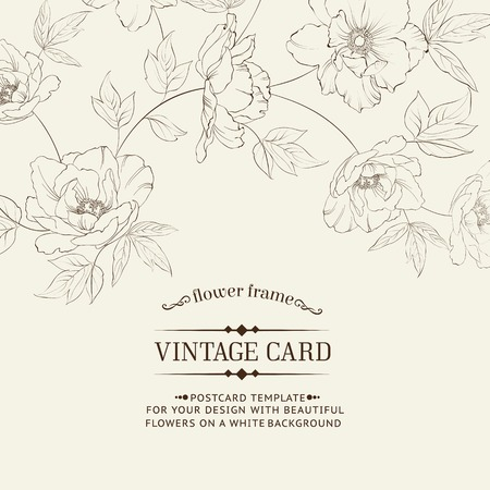 rose stem: Design of vintage floral card. Vector illustration.