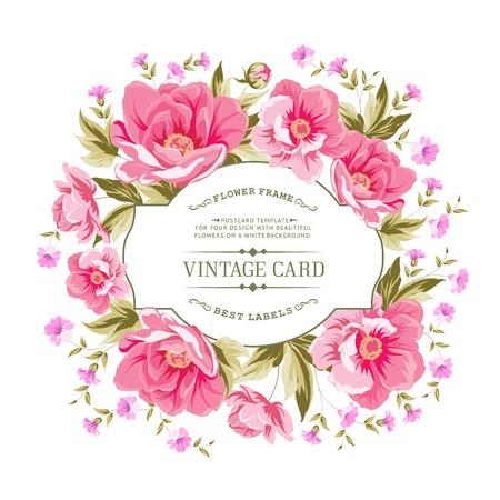 botanic: Luxurious vintage card of color peony . Vector illistration. Illustration
