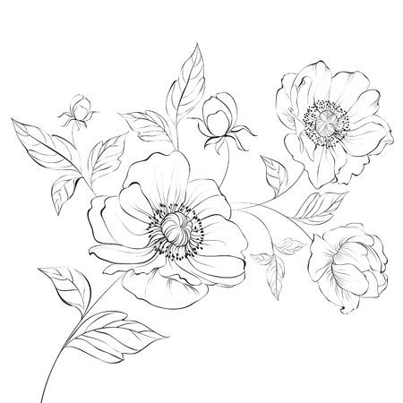 Red Poppy Flower Isolated on a White Background. Vector illustration. Illustration