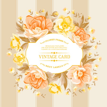 biege: Luxurious vintage card of color peony . Vector illistration. Illustration
