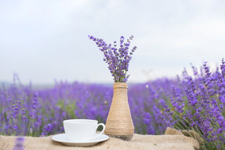herbs of provence: Lavender flower composition on field with vase and cup.