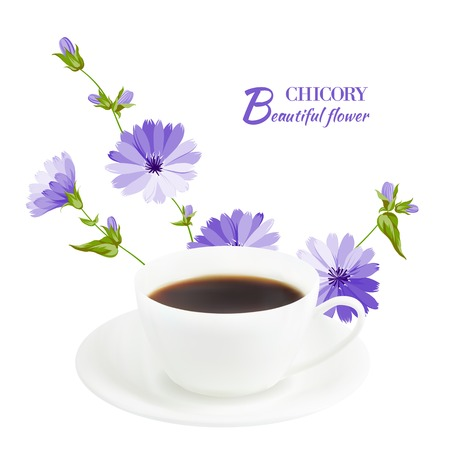 chicory coffee: Cup of coffee with chicory, on white background  Vector illustration  Illustration