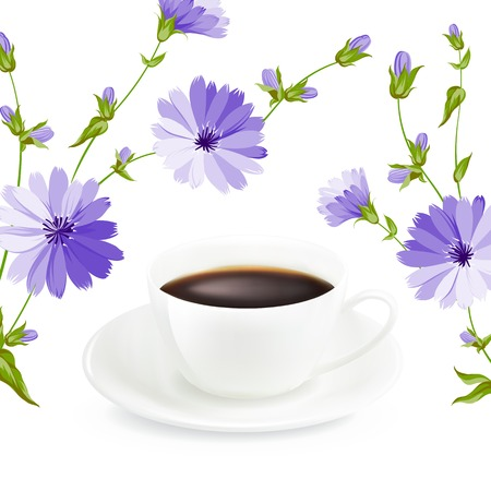 Cup of coffee with chicory, on white background  Vector illustration  Vector