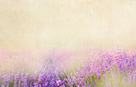 Lavender textile image over canvas  fabric