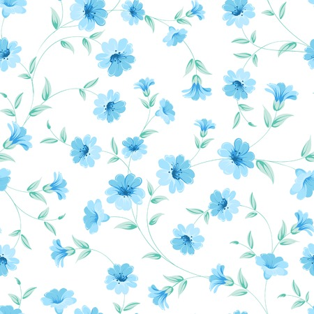chicory flower: Chicory seamless pattern on white background