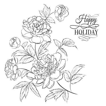 Beautiful hand drawn illustration of peony on a white background Imagens - 30478698