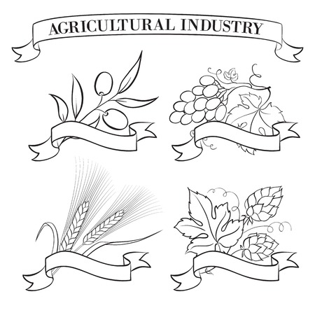 brewery  hops: Beer emblems and labels, green over white  Vector illustration
