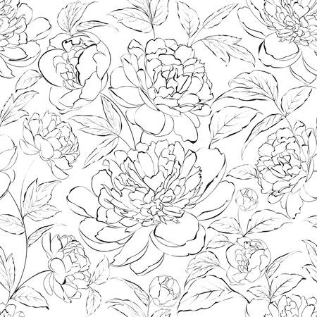 attern: Beautiful hand drawn illustration of peony on a white background  Illustration