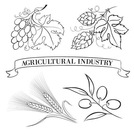 hop hops: Food emblems and labels, black over white  Vector illustration  Illustration