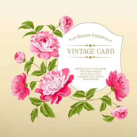 painted lines: Frame with peonies for vitage card  Vector illustration