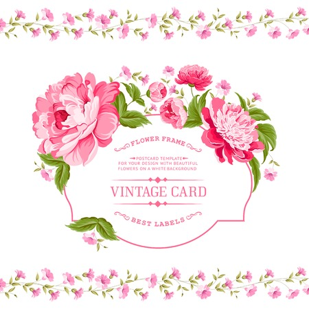 Luxurious invitation card of color peony flowers  Vector illustration