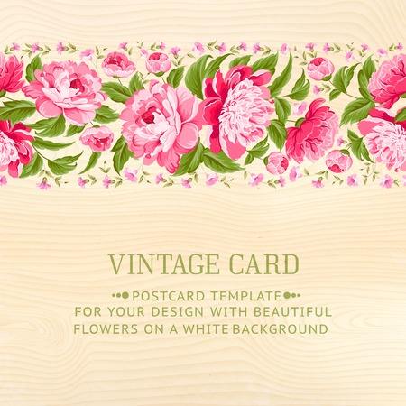 Beautiful peonies on wood background  Vector illustration  Vector