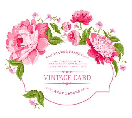 róża: Luksusowa karta zaproszenie z kwiatów piwonii w kolorze ilustracji wektorowych