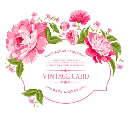 rose: Luxurious invitation card of color peony flowers  Vector illustration