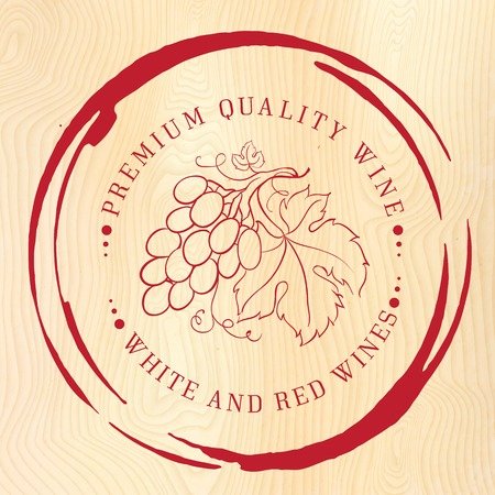 Template design for wine with grapes. Vector illustration. Vector