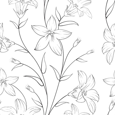 flower fields: Beautiful seamless pattern with flowers on a white background. Vector illustration. Illustration