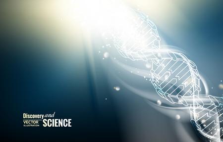 evolution: Ilustraci�n digital de una mol�cula de ADN. Ilustraci�n del vector.
