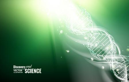 adn humano: Ilustración digital de una molécula de ADN. Ilustración del vector.