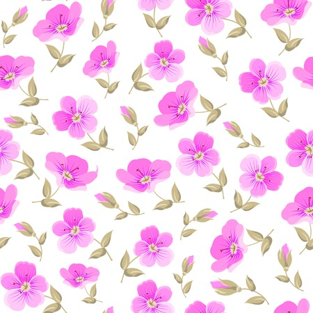 Floral seamless pattern on white background.  Vector