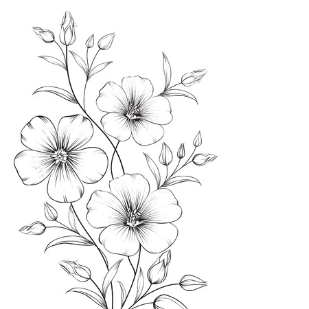 brown flax: Linum flower isolated over white background. Vector illustration.