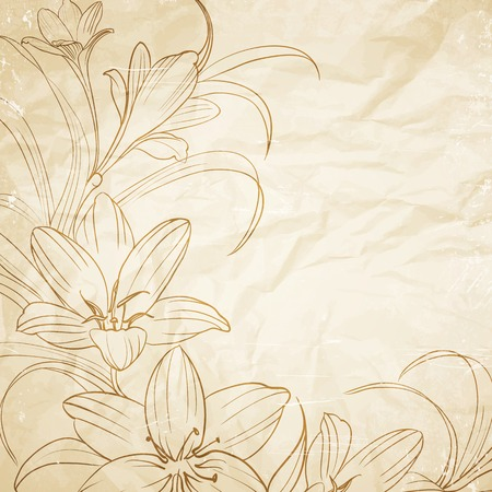 Crocus flowers pencil drawn on the old paper. Vector illustration. Ilustrace