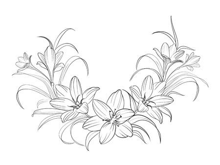 Crocus fiori isolati su bianco. Illustrazione vettoriale.