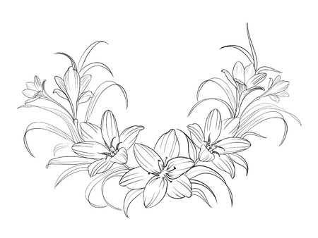 Crocus flowers isolated over white. Vector illustration.
