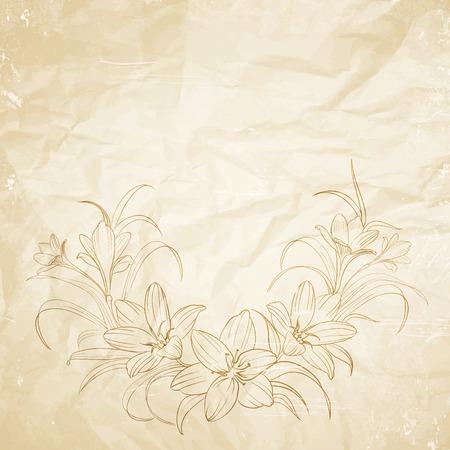 saffron: Crocus flowers pencil drawn on the old paper. Vector illustration. Illustration