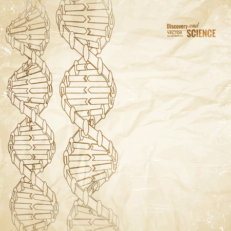Old paper with dna pencil image on the border. Vector illustration. Vector