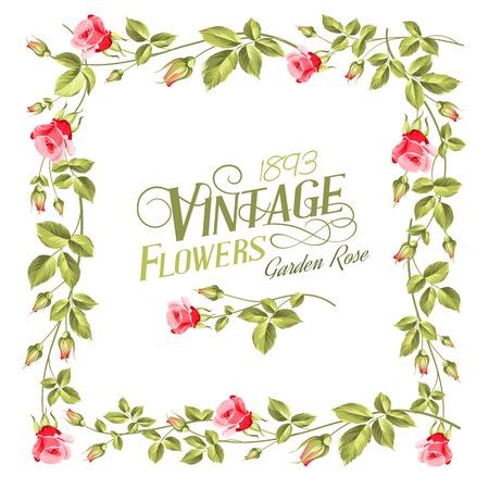 chik: Vintage flower frame over white background. Vector illustration. Illustration