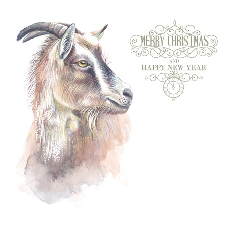 capra: New year painting goat with horns, hand-drawing, the new year simbol of 2015. Vector illustration. Illustration