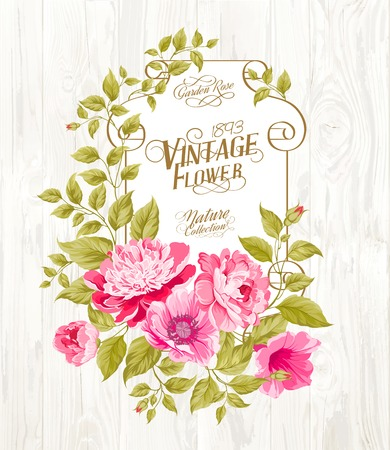 provence: Pink peony with a vintage label over wooden texture. Vector illustration. Illustration