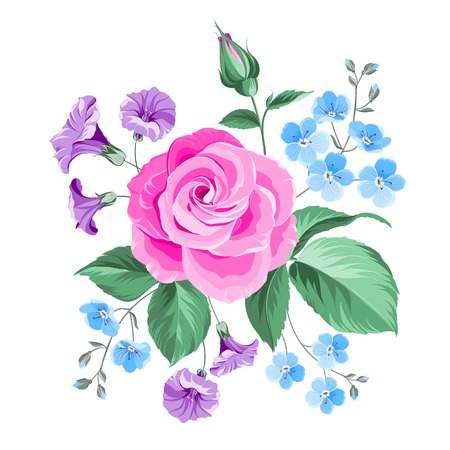 hand drawn rose: Hand drawn rose isolated over white background. Vector illustration. Illustration