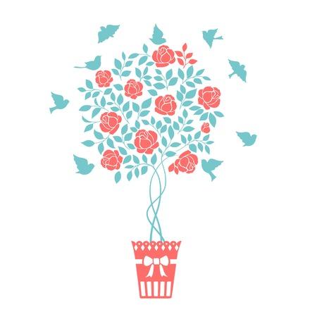 chik: Rose garden bush isolated over white background. Vector illustration.