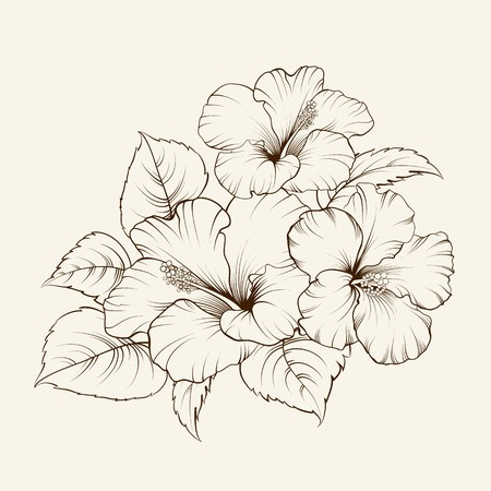 Black and white flowers stock photos royalty free black and white flower of mallow on a white background vector illustration mightylinksfo