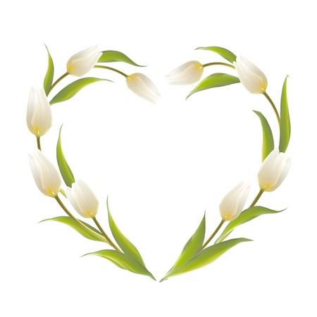 felicitation: Tulip heart frame bouquet over white background. Vector illustration. Illustration