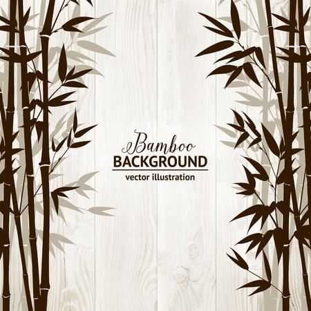 palmetto: Bamboo forest over wooden wall on backside. Vector illustration. Illustration