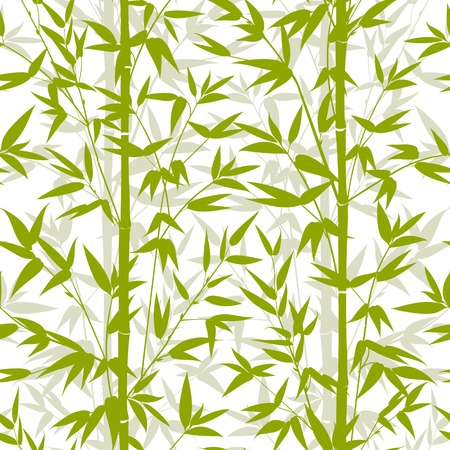 vectro: Bamboo green seamless pattern isolated on white background. Vectro illustration.