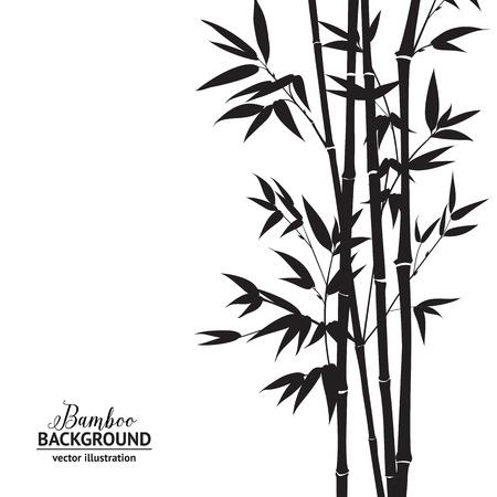 竹林、白い背景の上の水墨画。ベクトルの図。