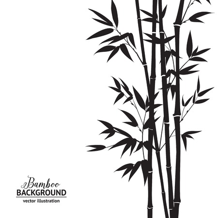 Bamboo bush, ink painting over white background. Vector illustration.