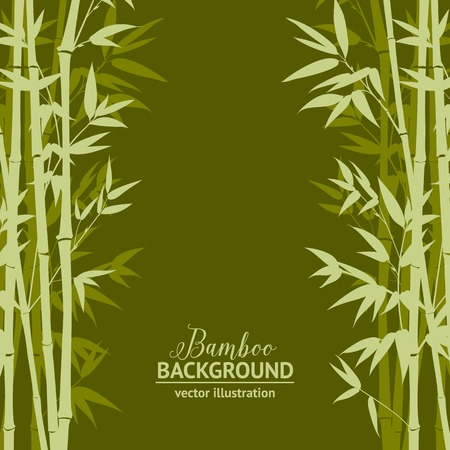 Bamboo forest over green background, design card. Vector illustration.