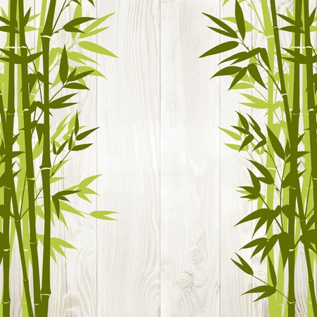 Bamboo green forest over wooden wall on backside. Vector illustration. Vector