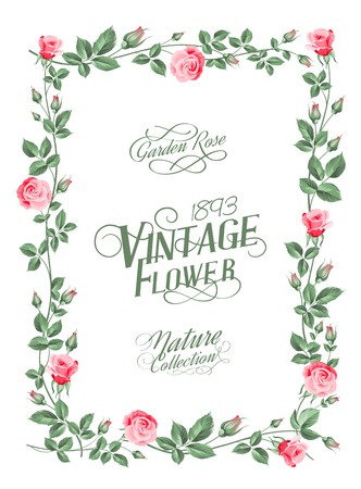provence: Marriage invitation with greeting text template. Vector illustration.