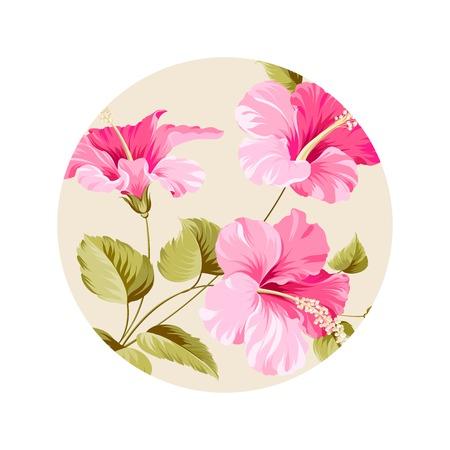 plante tropicale: Fleur d'hibiscus plante tropicale � l'int�rieur de cadre de cercle. Vector illustration. Illustration