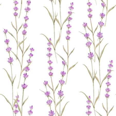 Romantic vintage pattern with violet lavender flowers of provence. photo