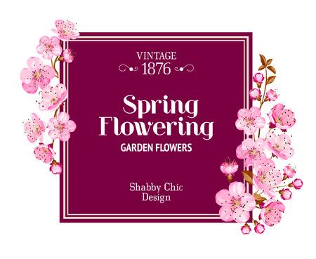 flor de sakura: Dise�o de la tarjeta de primavera con flor de Sakura de la flor. Dise�o de cosecha. Vectores