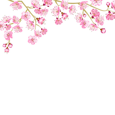 Card with handdrawn cherry blossom and ready for text. Vector illustration.
